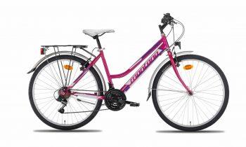 N625-L-350x210 City bike Trekking