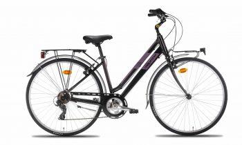 N925-L-350x210 City bike Trekking