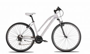 N951-L-350x210 City bike Trekking